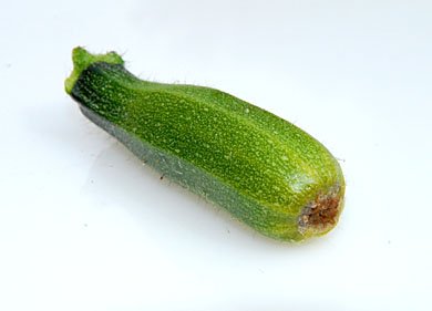 courgette_5
